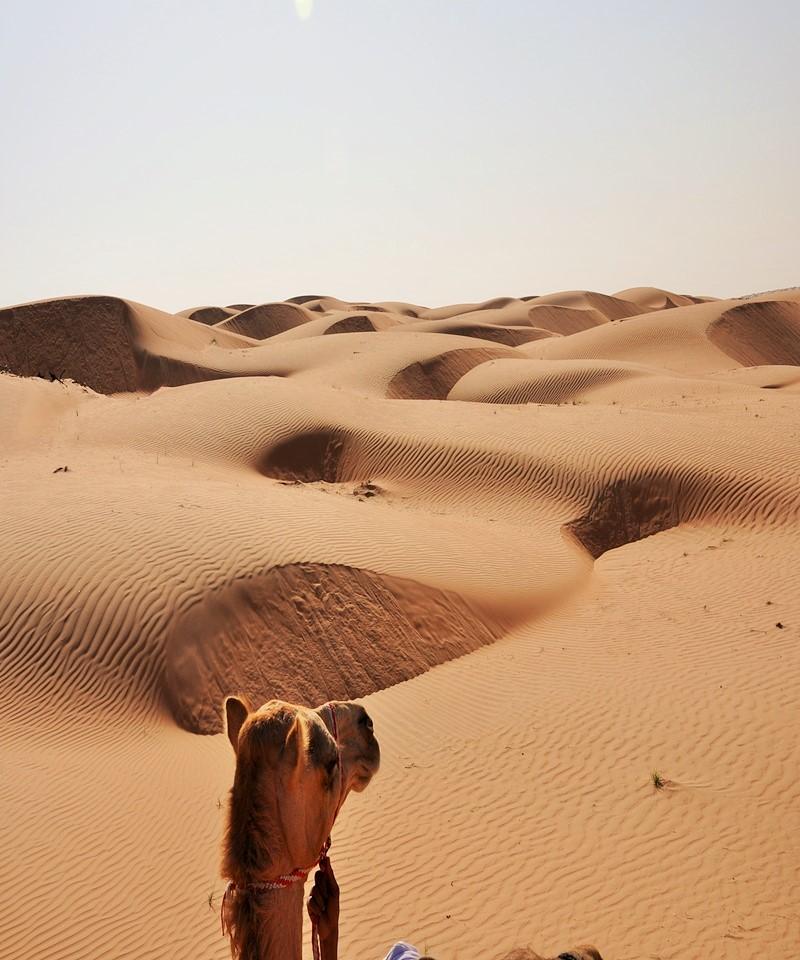 Oman travel tours